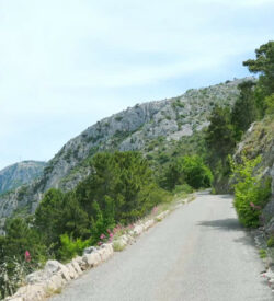 Part 3 of City Of Nice Loop Grand Tour Thumbnail