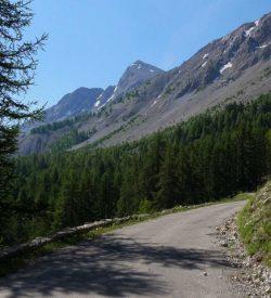 Col des Champs 2