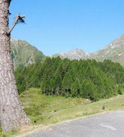 Ride from Locarno to Sambuko Lake